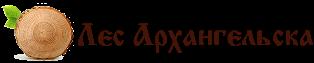 Лес Архангельска — Пиломатериалы от производителя в Москве